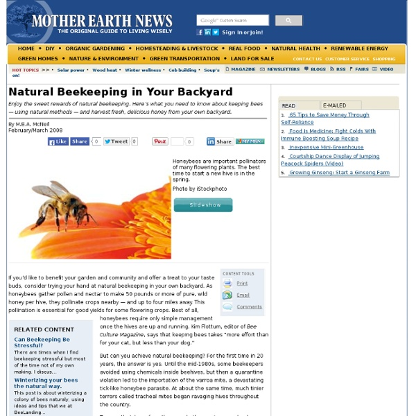 Keep Bees, Naturally!