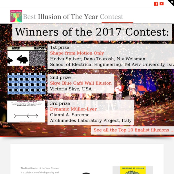 Best Illusion of the Year Contest