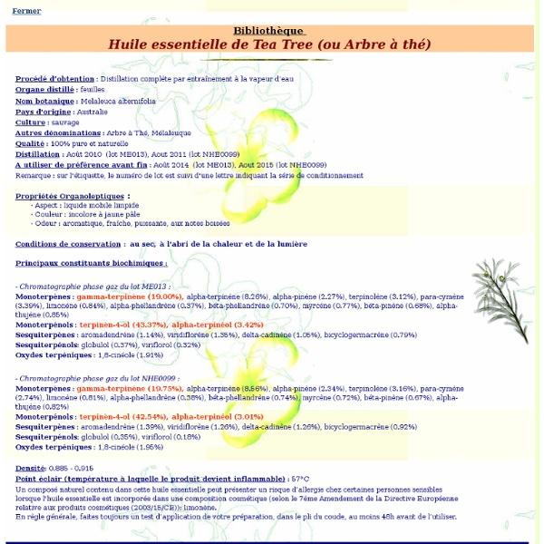 Fiche bibliothèque technique huile essentielle de Tea Tree - Melaleuca alternifolia