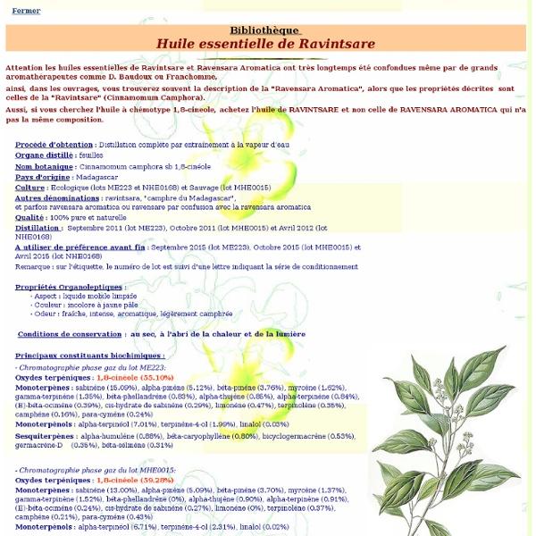Fiche bibliothèque technique huile essentielle de Ravintsare - Cinnamomum camphora sb 1,8-cinéole