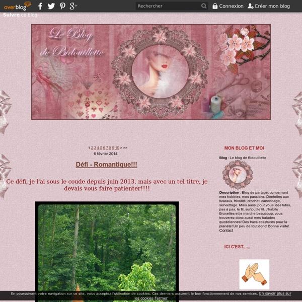 Le blog de Bidouillette
