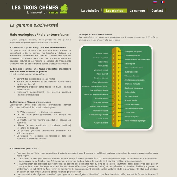 La gamme biodiversité - Haie écologique (entomophaune)