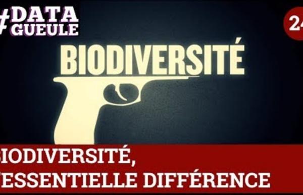 Biodiversité, l'essentielle différence #DATAGUEULE 24