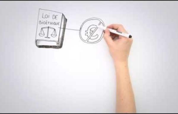 La Loi de Bioéthique, l'Agence de la biomédecine... et vous !