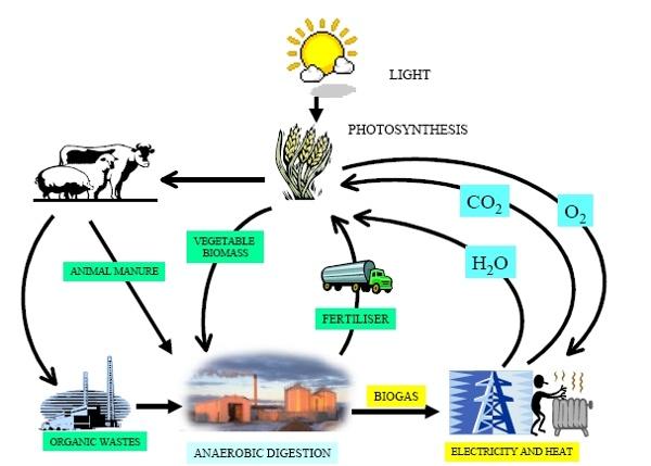 Biogas.jpg (immagine JPEG, 607×435 pixel)