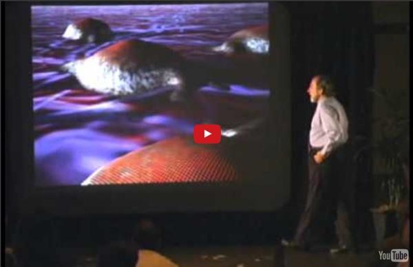 Biology of Belief - by Bruce Lipton (full documentary)