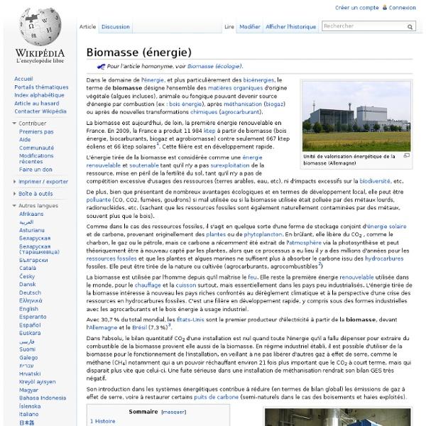 Biomasse (énergie)