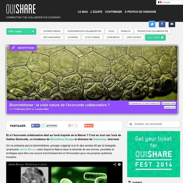 Biomimétisme: la vraie nature de l'économie collaborative ?