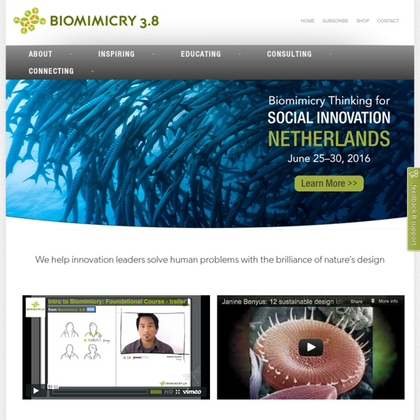 Biomimicry - Nature as Model, Measure and Mentor