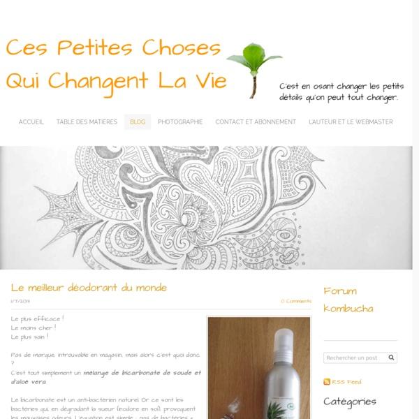 Le blog - Ces Petites Choses Qui Changent La Vie