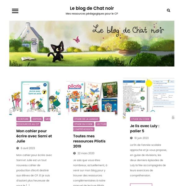 Le blog de Chat noir – Une année au CP