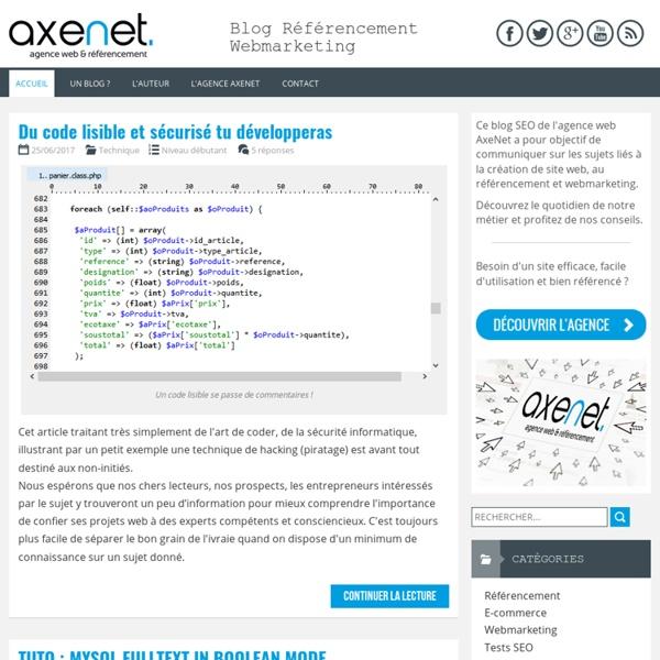 Blog SEO AxeNet