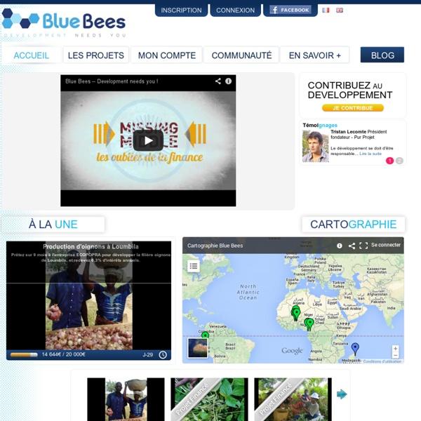 BlueBees - Development needs you