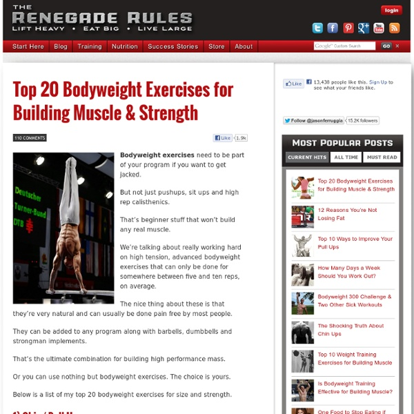 weight loss gain muscle workout routines