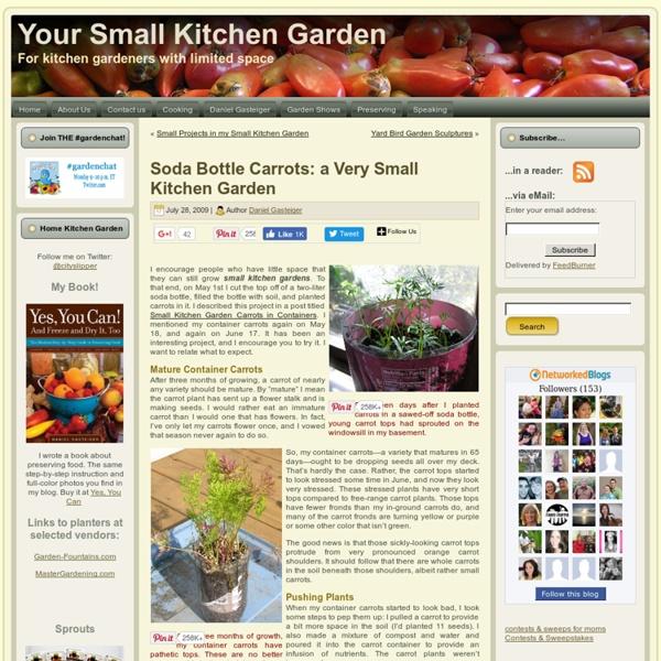 Soda Bottle Carrots: a Very Small Kitchen Garden