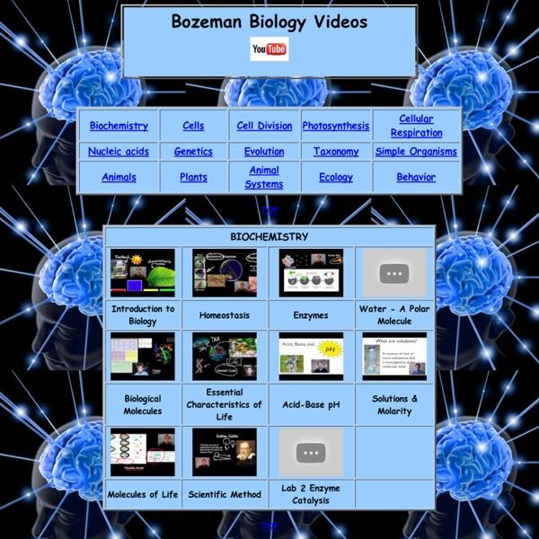 Bozeman Biology Videos