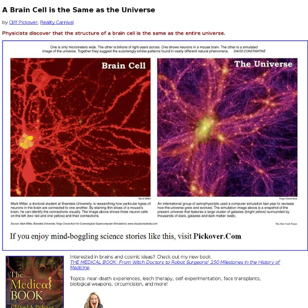 A Brain Cell is the Same as the Universe