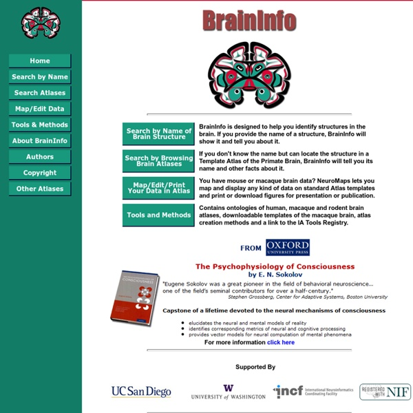 BrainInfo