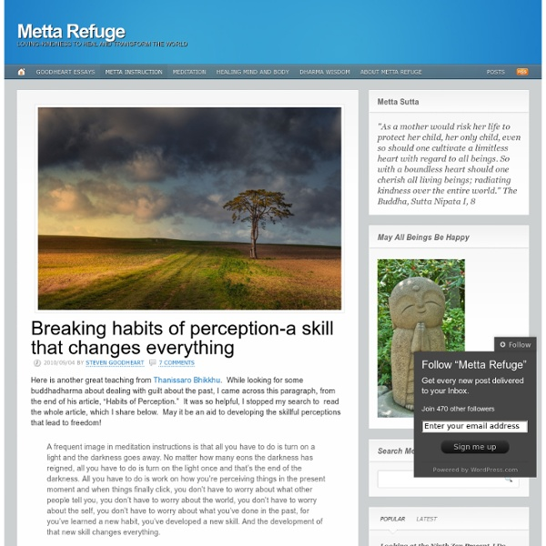 Breaking habits of perception-a skill that changes everything « Metta Refuge
