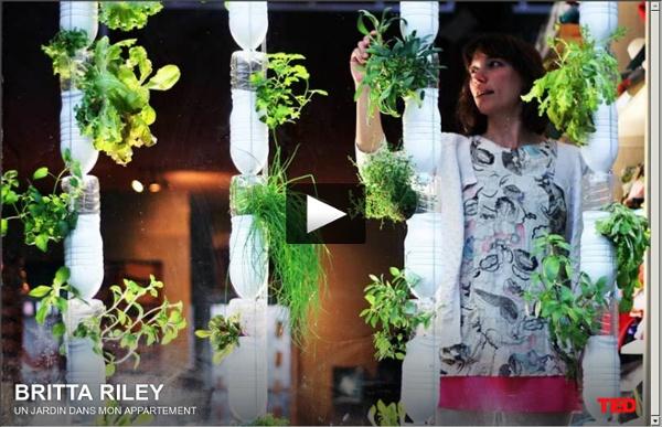 Britta Riley : un jardin dans mon appartement