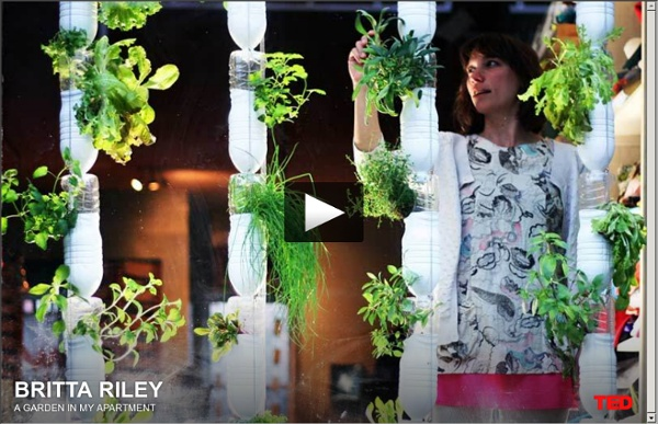 Britta Riley: A garden in my apartment