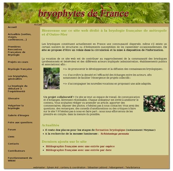 Bryophytes de France
