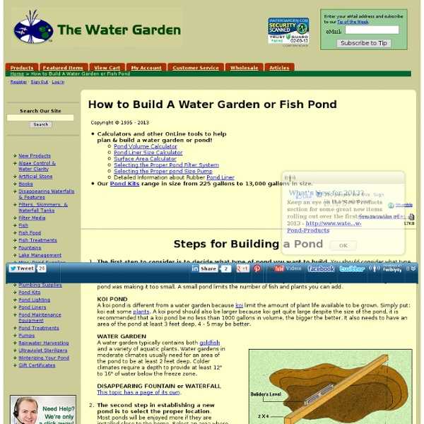 How to Build A Water Garden or Fish Pond