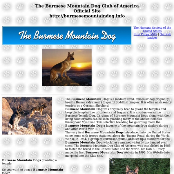 Burmese Mountain Dog Club of America