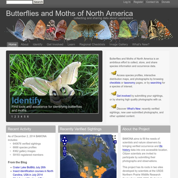 Collecting and sharing data about Lepidoptera