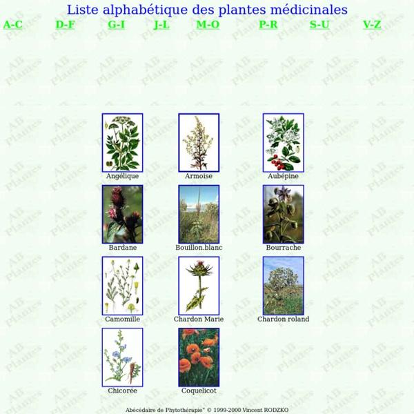Liste alphabétique des plantes médicinales