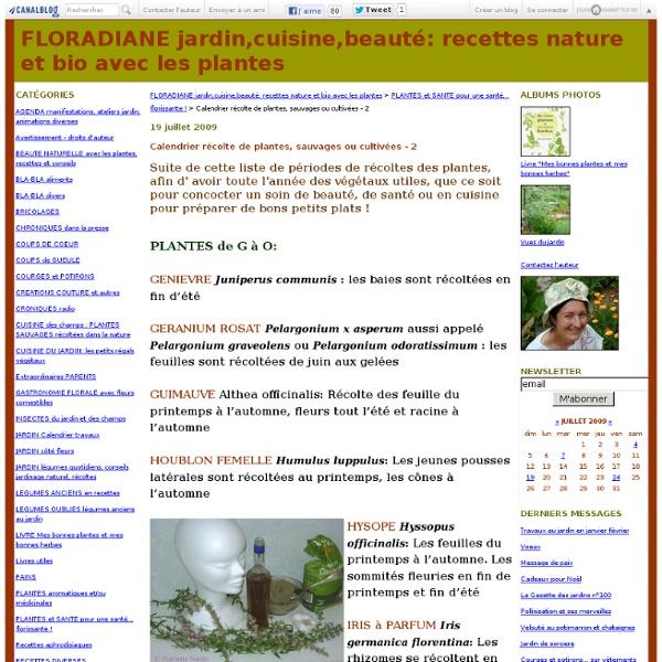 Calendrier récolte de plantes, sauvages ou cultivées - 2