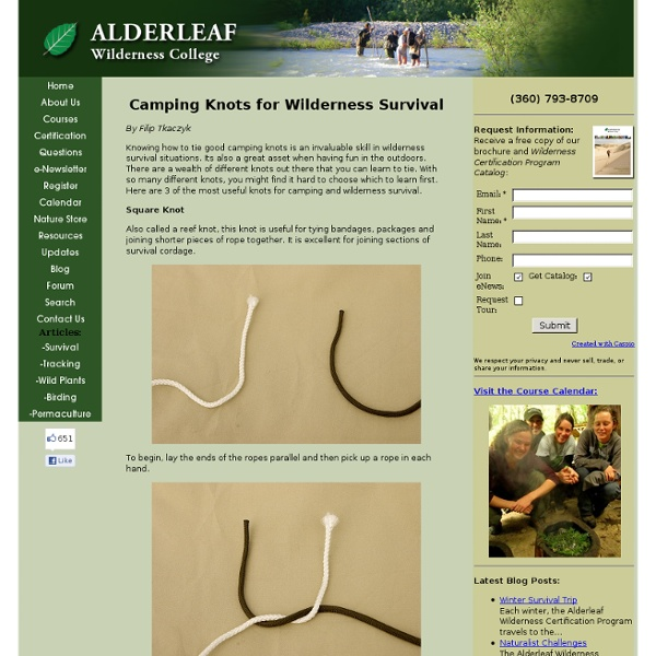 Camping Knots for Wilderness Survival