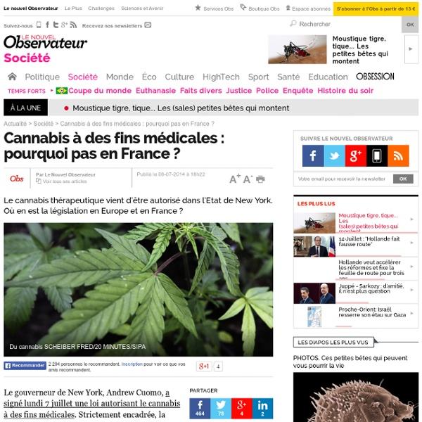 Cannabis à des fins médicales : pourquoi pas en France ?