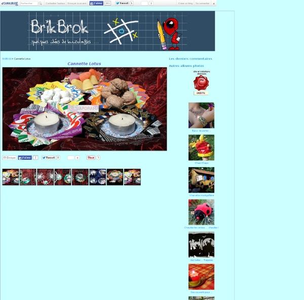 Cannette Lotus - Album photos - BrikBrok