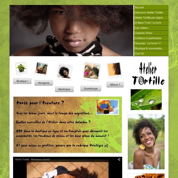 Cheveu Adulte enfant. Apprentissage coiffure soin bio écologique entretenir beauté cheveu afro, crépu, frisé, bouclé, naturel... (démêlage, vanille, tortille, chignon, tresse, locks, dreadlocks) - Home