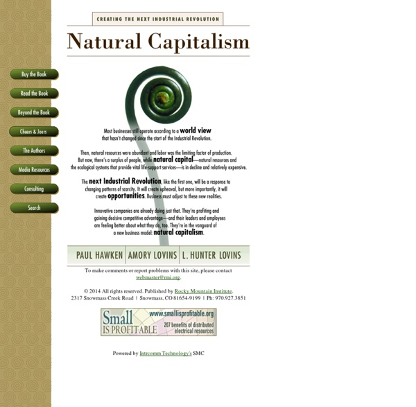 Natural Capitalism-Creating the Next Industrial Revolution