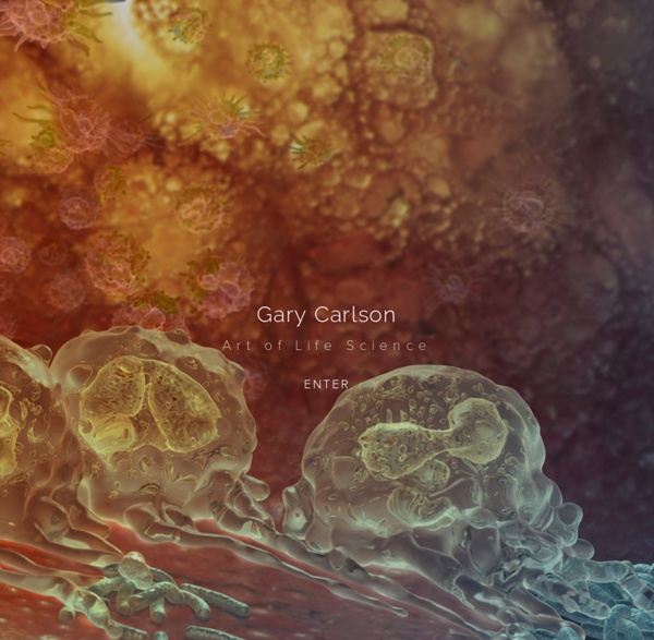 Gary Carlson - Illustration & Animation - Medical & Biological