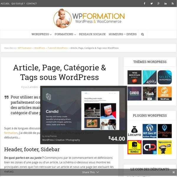 Article, Page, Catégorie & Tag WordPress, les différences