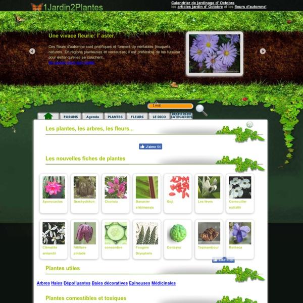1 Jardin 2 Plantes : Plantes au jardin par catégorie, da A à Z, ...