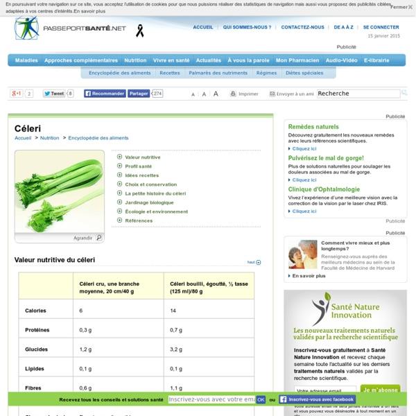 Céleri : antioxydants et vitamine K