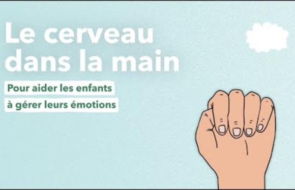 Le cerveau dans la main, une animation pour aider les enfants à gérer leurs émotions