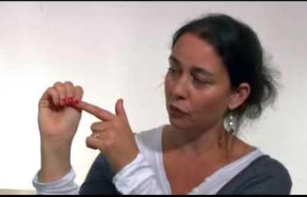 Le modèle du Cerveau dans la main de Daniel Siegel, démonstration faite par Nadine Gaudin
