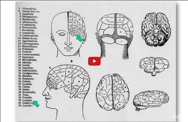 Le cerveau en pièces détachées - une conférence de Laurent Cohen