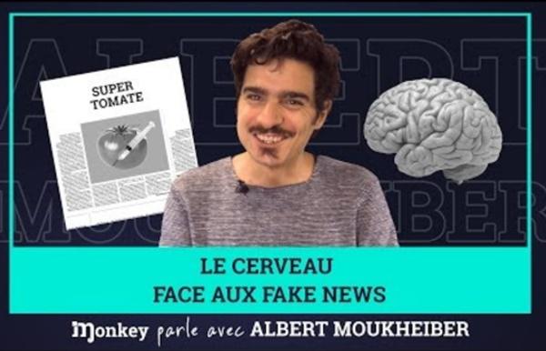 Notre cerveau face aux fake news