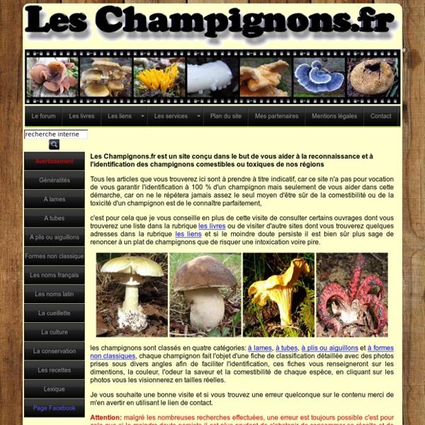 Les champignons comestibles ou toxiques, cueillette, recettes, conservation