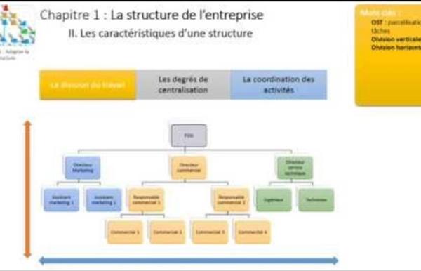 Thème 3 - Chapitre 1 : La structure de l'entreprise