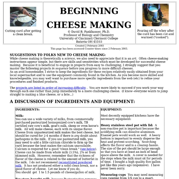 Cheese Making for Beginners