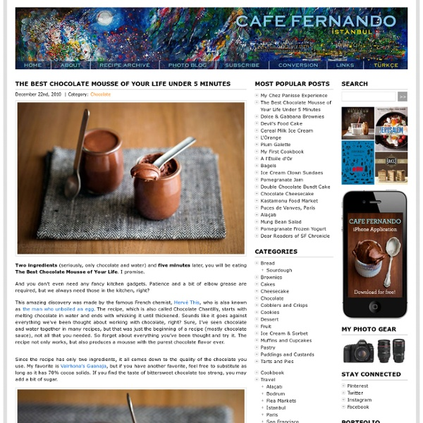 The Best Chocolate Mousse of Your Life Under 5 Minutes : Cafe Fernando – Food Blog - best chocolate mousse - best chocolate mousse recipe - chocolate chantilly - chocolate mousse recipe - herve this - Chocolate