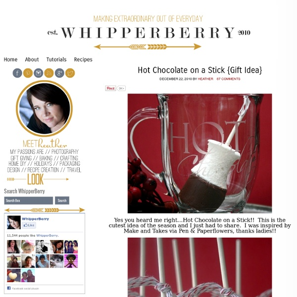 » Hot Chocolate on a Stick {Gift Idea} » Whipperberry