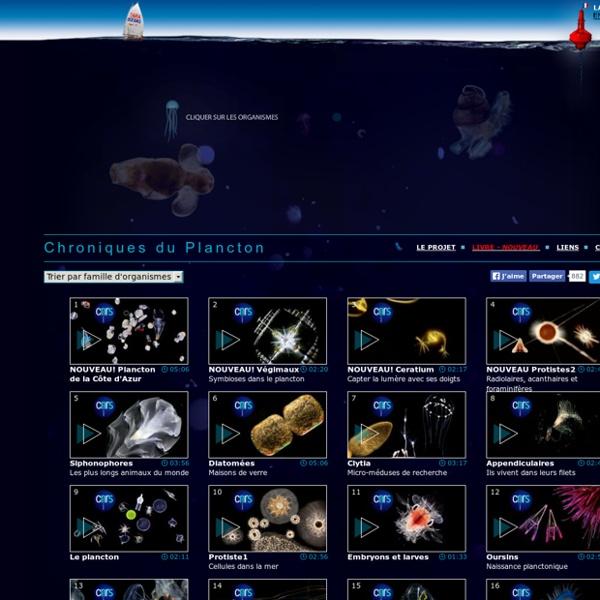 Les Chroniques du Plancton